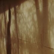 Faded shadows